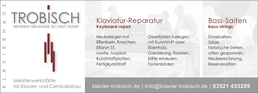 Klaviatur-Reparatur, Bass-Saiten, Keyboard-repair, bass-strings